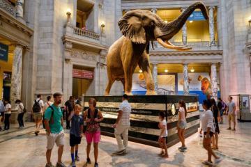 Khám phá những bảo tàng miễn phí ấn tượng ở Mỹ