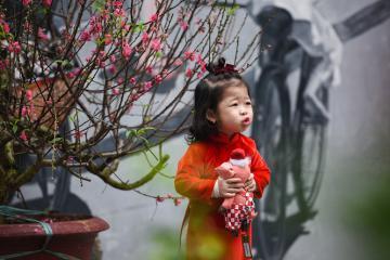 Chợ hoa Hàng Lược, Hà Nội 500 năm tuổi - mỗi năm chỉ họp một lần duy nhất