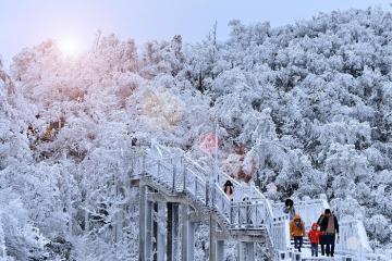 Trương Gia Giới mùa đông chìm trong băng tuyết trắng xóa