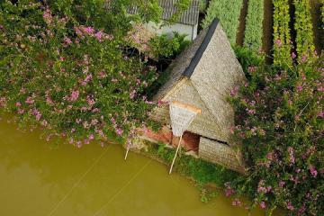 3 homestay ở Sa Đéc chuẩn miệt vườn cho chuyến tham quan làng hoa Đồng Tháp