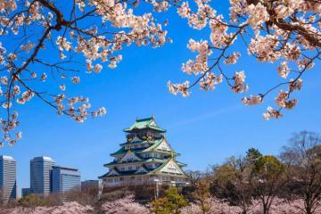 Japan Airlines miễn phí 50.000 vé máy bay chào đón Thế vận hội Olympic Tokyo 2020