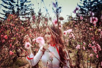 Thung lũng hoa đào Mười Lời - địa chỉ sống ảo đẹp 'mê hồn' ở Đà Lạt