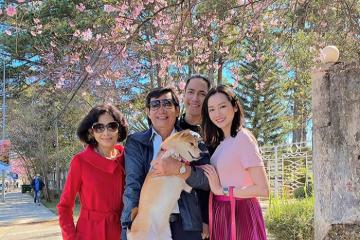 Hoa hậu Trúc Diễm cùng gia đình du lịch Đà Lạt ngắm mai anh đào