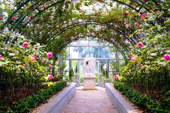 Công viên thực vật Đồi Vạn Hoa - Thiên đường 5 châu tại Vinpearl Land Nha Trang