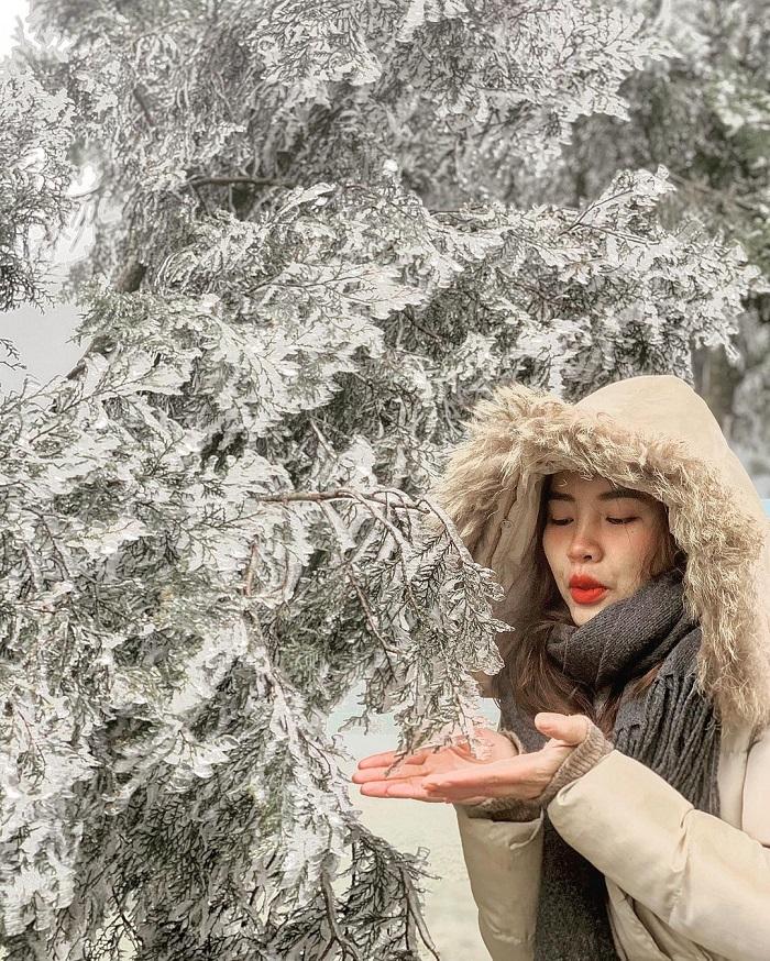 địa điểm ngắm tuyết ở Việt Nam