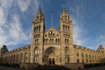 Bảo tàng Lịch sử Tự nhiên London hút khách bằng vẻ đẹp triệu năm
