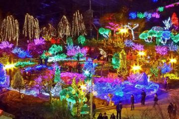 Du lịch Gyeonggi Hàn Quốc nhất định không thể bỏ qua những điểm vui chơi này