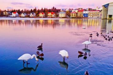 Du lịch Reykjavik Iceland kiểu thanh cảnh