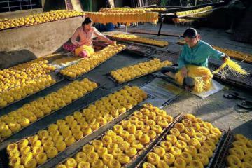Bún bắp Phú Yên – đặc sản hiếm có của xứ Nẫu