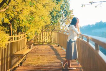 'Con đường Hàn Quốc' đậm chất ngôn tình ở cà phê Mộc Trà Farm Đà Lạt