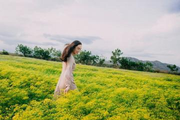 Check in cánh đồng hoa thì là vàng rực ở Ninh Thuận khiến giới trẻ 'đứng ngồi không yên'