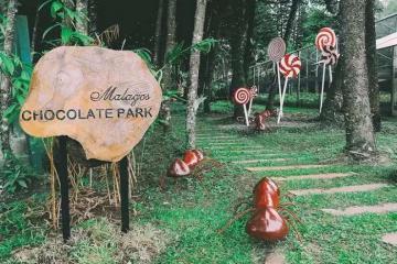 Thăm bảo tàng chocolate và nghỉ dưỡng tại 'thiên đường' khi du lịch Davao Philippines mùa Valentine