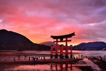 Đảo Miyajima - Nhật Bản áp thuế nhập cảnh đối với khách du lịch