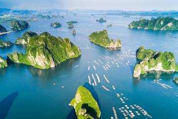 Top 7 địa điểm tham quan tuyệt đẹp ở Hạ Long sẽ khiến bạn lưu luyến không muốn quay về