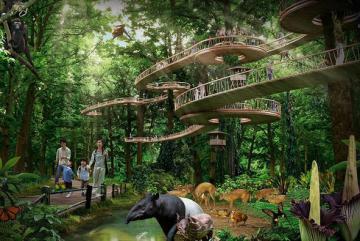 Hòa mình vào thiên nhiên với khu nghỉ dưỡng trong rừng tại Singapore