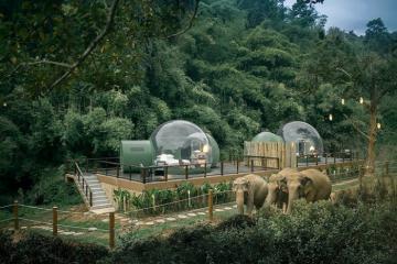 Đến Thái Lan khám phá những chú voi từ ngôi nhà bong bóng