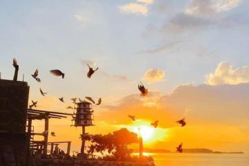 KDL Humiso Nam Du Kiên Giang - điểm ngắm cảnh đẹp trên đảo và nhiều góc sống ảo xiêu lòng