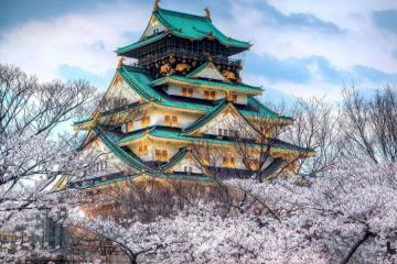 Tour du lịch Nhật Bản ngắm hoa anh đào giá chỉ từ 18,9 triệu đồng