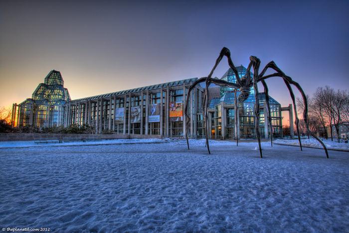 Khám phá Ottawa, thành phố cực 'cool' của Canada