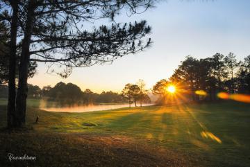 'Nín thở' trước 5 ngọn đồi đẹp nhất Đà Lạt