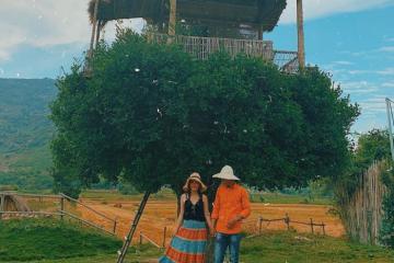Lộ diện phim trường trên cây ở Ninh Thuận cực đẹp, siêu lạ khiến dân tình 'đứng ngồi không yên'
