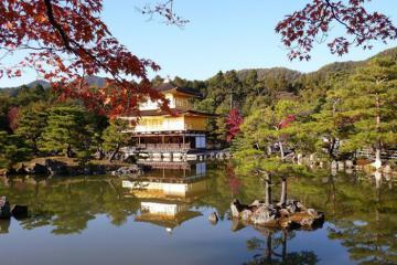 Khách sạn Aman Kyoto: Kho báu bí mật trong rừng Nhật Bản