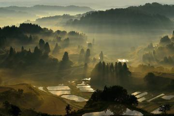 Những trải nghiệm văn hóa ẩm thực đậm 'chất' khi du lịch Niigata Nhật Bản