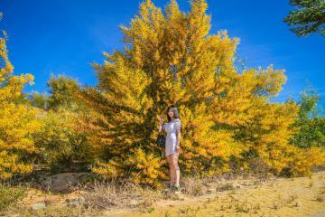 'Bật mí' điểm sống ảo vàng rực, đẹp như phim Hàn ở Phan Thiết
