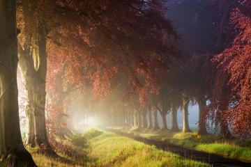 Ngất ngây với vẻ đẹp thiên nhiên Scotland
