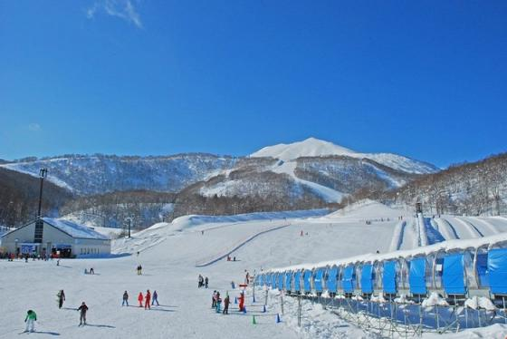 Đây là lý do nên du lịch 'thiên đường tuyết' Niseko Nhật Bản vào mùa hè