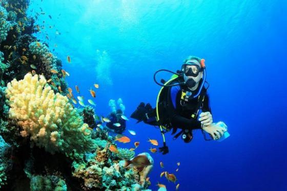 Những thiên đường lặn biển không thể bỏ lỡ trong mùa hè