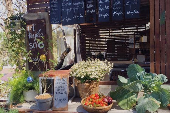Vĩ tuyến số 6 – tiệm cà phê từ những món đồ tái chế 'đẹp lạ' giữa lòng Đà Lạt