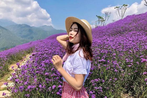 Trốn dịch và hòa mình vào thiên nhiên ở vườn hoa bãi bồi sông Lam