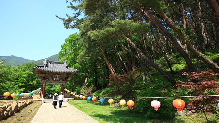 15 ngôi chùa Phật linh thiêng nhất định phải ghé thăm khi du lịch Hàn Quốc