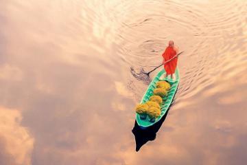 """Tác phẩm """"Thuyền hoa"""" của Việt Nam lọt top ảnh đẹp thế giới."""