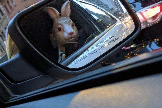Cách ly vẫn có thể quẩy: Bữa tiệc Ngày tận thế với shipper... thỏ