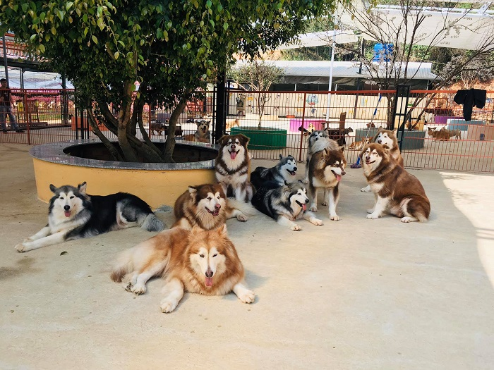 điểm đến nổi tiếng trên cung đèo Tà Nung