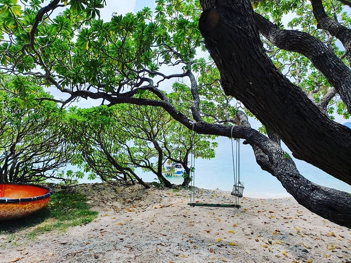 Hòn Cau - Côn Đảo
