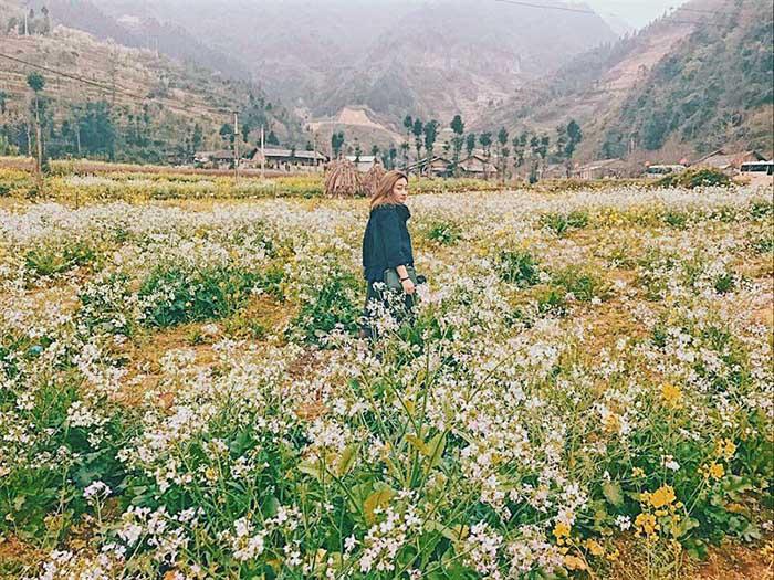 Phó Bảng - ngôi làng Hàn Quốc đẹp rụng tim giữa lòng Hà Giang
