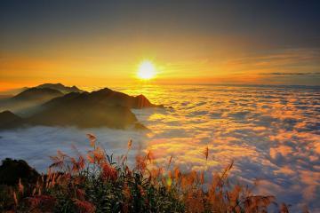 Du lịch Đài Loan: Có một A Lý sơn đẹp mơ màng như thế