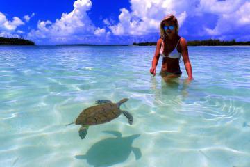 Du lịch Bahamas: 9 điểm đến cho kỳ nghỉ của bạn càng thêm tuyệt vời