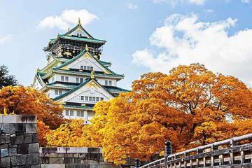 Tour Nhật Bản mùa lá đỏ trọn gói giá 19,9 triệu đồng