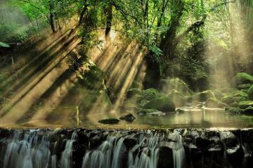Thám hiểm rừng nhiệt đới Panama, bạn đã thử chưa?