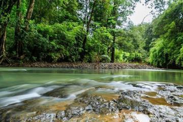 Vườn quốc gia Phước Bình ẩn mình giữa 'chảo lửa' Ninh Thuận