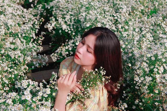 vườn hoa tím