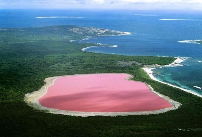 bãi biển màu hồng