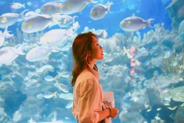 Nhất định phải đến chiêm ngưỡng 5 thủy cung đẹp nhất Châu Á