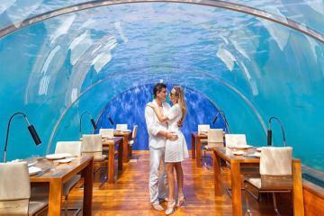 """Bữa ăn cực """"đê mê"""" tại nhà hàng thủy cung - Conrad Maldives Rangali"""