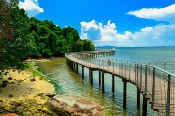 Ghé thăm hòn đảo Pulau Ubin hoang sơ nhất quốc đảo sư tử