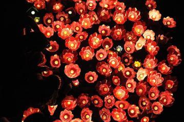 Người Trung Quốc thường kỉ niệm ngày Tết Trung thu như thế nào?